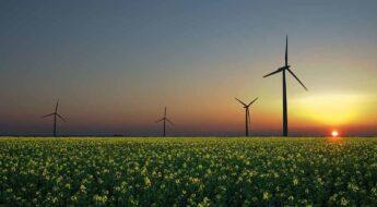 ¿Es el momento de invertir en las renovables?
