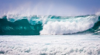 Maui Huge Wave